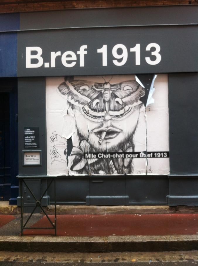 Rue Fermat, 31000, Toulouse (14 janvier 2014)