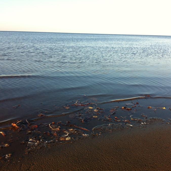 Lac St Jean - 12 octobre 2014 - Droits réservés